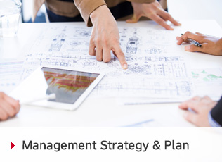 Management Strategy & Plan