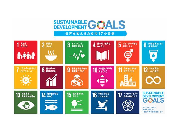 持続可能な開発目標 sdgs sustainable development goals 達成へ向け